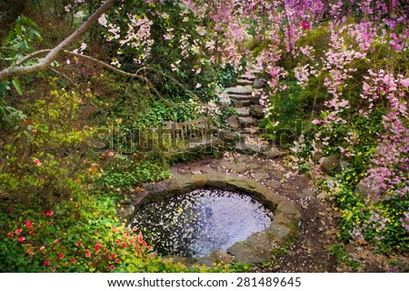 Photograph of spring garden with artistic painterly effect - stock photo
