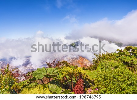 Photograph showing contrast between lush vegetation and the stark landscape of the volcano. - stock photo
