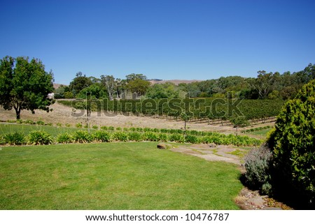 Photograph taken at Grant Burge's Winery in the Barossa Valley (South Australia). - stock photo