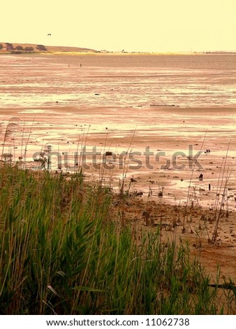 Photograph taken at Meningie on the shore of Lake Albert during the current drought (South Australia). - stock photo