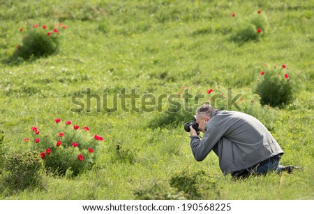 Photographer is taking pictures of rare flower steppe peony - stock photo