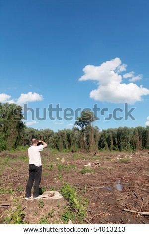 Photographer taking pictures of freshly sawed   trees - stock photo