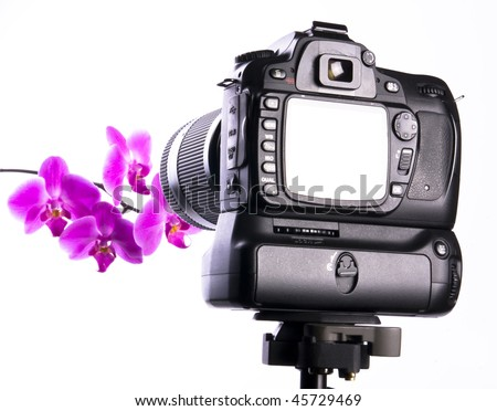 Photographing orchid in photo studio with full screen review. Focus on camera. - stock photo
