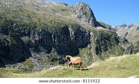 Photographs of the excursion, to the lakes of ÔO and Espingo, in the solid mass of the Pyrenees, France.