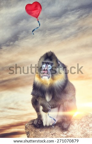 photomontage of a Bedouin letting out a heart shaped balloon - stock photo