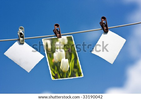 Photos hanging on a clothesline - stock photo