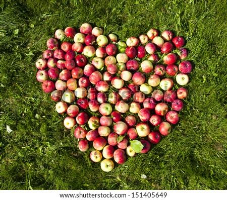 Photos of apples on the ground in the form of heart - stock photo