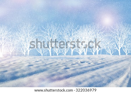 Photos of the winter woods. Winter landscape. - stock photo