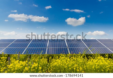 Photovoltaic modules and yellow flowers  - stock photo