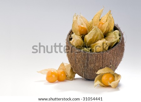 physalis berries in coconut shell composition - stock photo