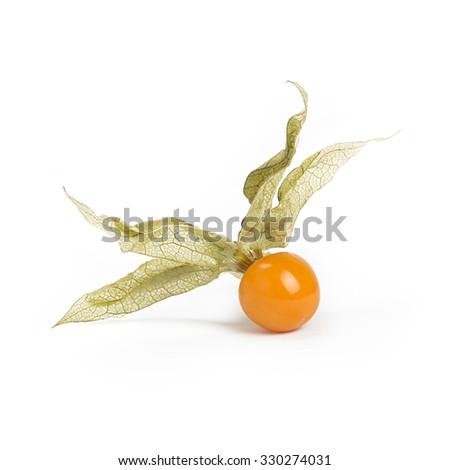 Physalis fruit isolated on white background, shallow DOF - stock photo