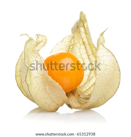 Physalis fruit on white background - stock photo