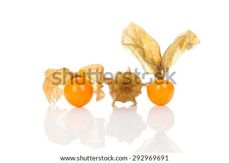 Physalis, ground cherry isolated on white background with reflection. - stock photo