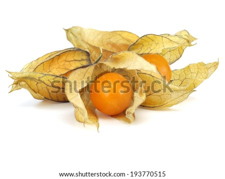 Physalis on a white background  - stock photo