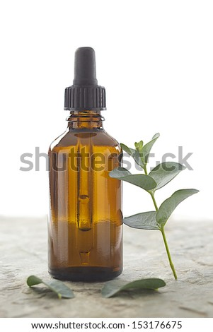 Phytoterapy - Eucalyptus essential oil