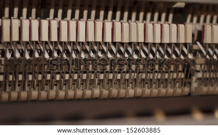 Piano hammers and dampers close up