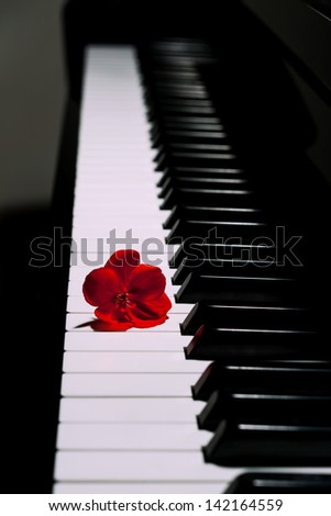 Piano with a red flower - stock photo