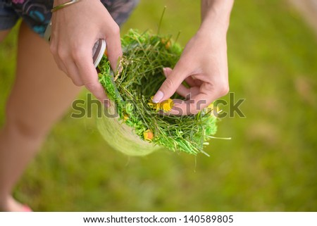 Picking up dandelions in a basket