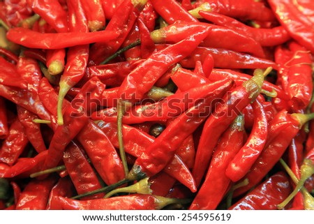 pickled bright red chili pepper - vegetable background - stock photo