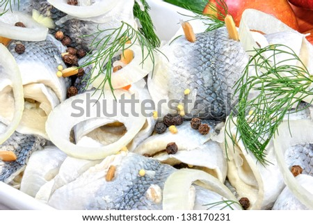 pickled herring with dill and peppercorns - stock photo