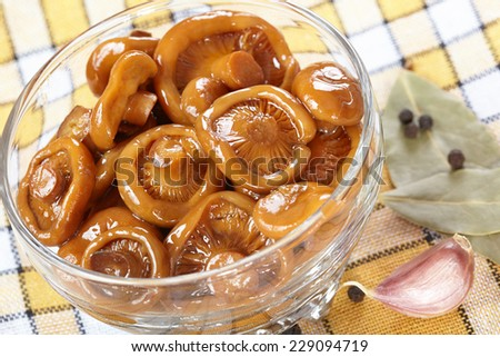 Pickled orange mushrooms with spices - stock photo