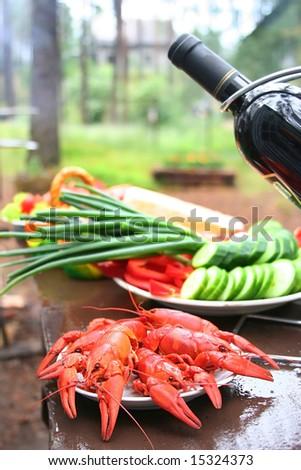 picnic - stock photo