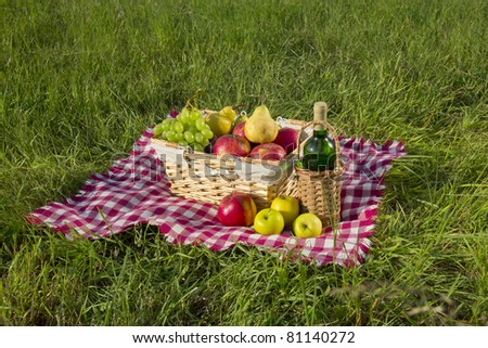 Picnic at meadow - stock photo