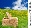 Picnic basket sitting on the grass in a rolling, dandelion filled meadow - stock photo