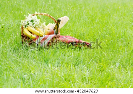 Picnic basket with apples bananas cheese and wine on green grass