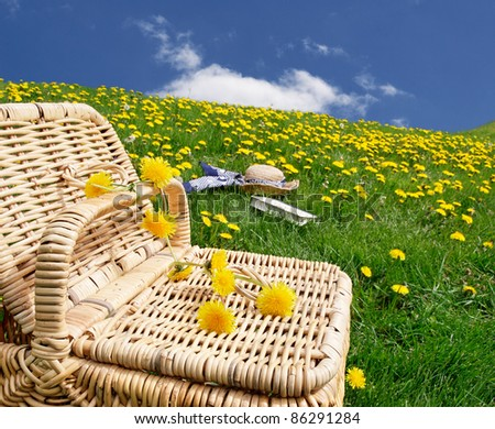 Picnic basket with hat and book in the distance - stock photo
