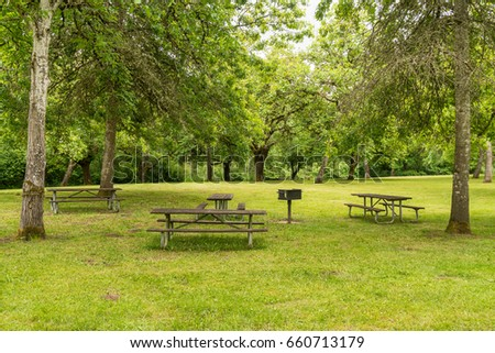 Picnic Benches Under the Shade of Large Green Trees