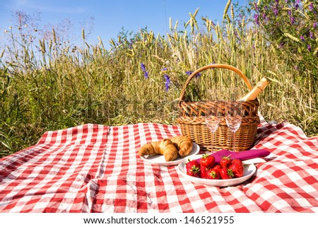 picnic blanket with champagne, strawberries and croissant  - stock photo