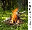 Picnic. Fire in the forest - stock photo