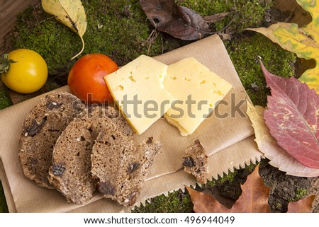 Picnic in forest. Rye unleavened bread without yeast, cheese slices and tomatoes on sheet of paper on green moss against background bark tree. Healthy life and food concept. Top view
