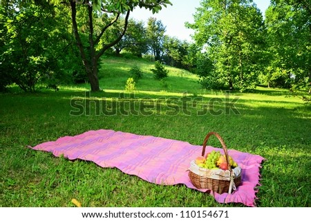 Picnic in the park with a basket of summer fruit - stock photo