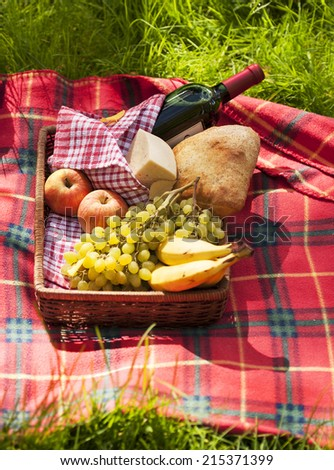 Picnic. Light brown style - stock photo