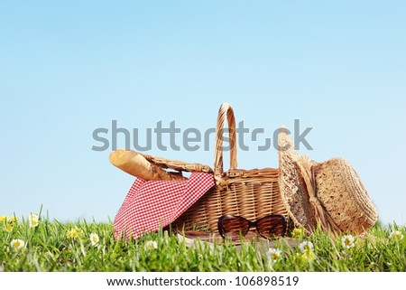 Picnic on Meadow - stock photo