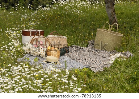 Picnic on meadow and daisy flowers - stock photo