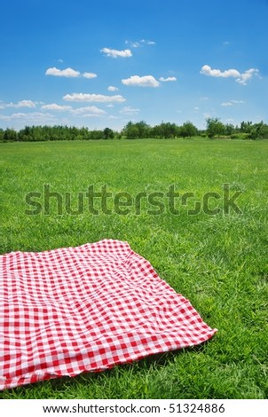 Picnic on meadow at sunny day. - stock photo
