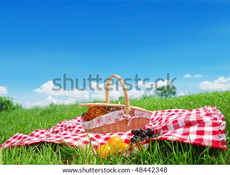Picnic on Meadow at Sunny Day,Large copy space. - stock photo