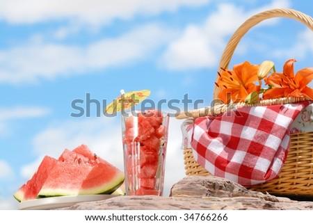 Picnic outdoor - stock photo