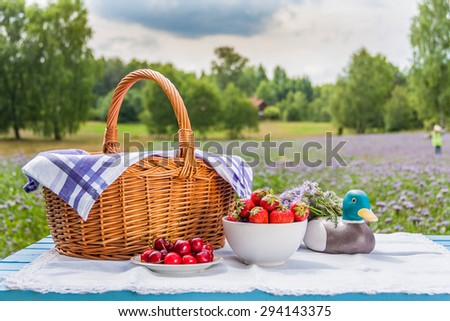 Picnic outdoors
