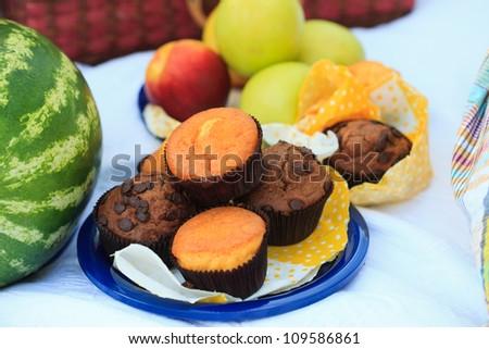 Picnic plate - fruits, muffins - stock photo