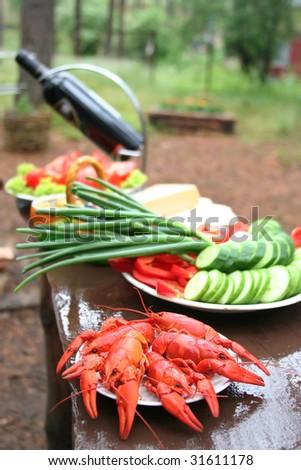 picnic (sallow dof) - stock photo