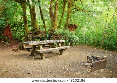 Picnic table and BBQ pit at a forest campsite in Oregon - stock photo