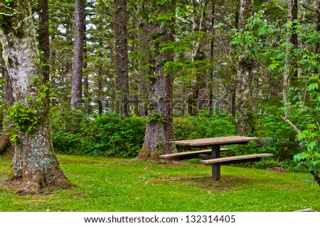 Picnic Table in Forest Park - stock photo