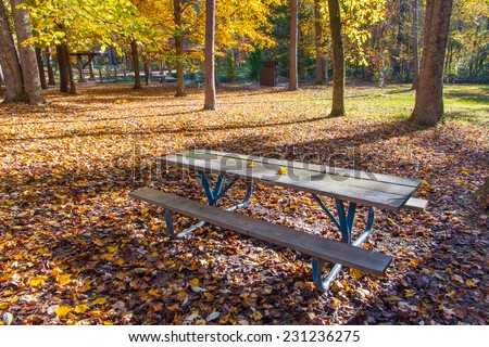 Picnic table in the shadow of trees in autumn park - stock photo