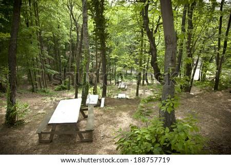 Picnic tables amongst greenery. - stock photo