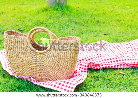 Picnic Time  in the garden