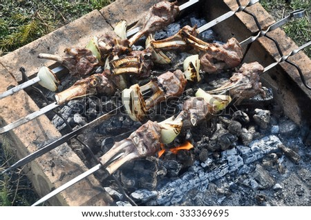 Picnic with barbecue. Cooking meat on skewers over hot coals.